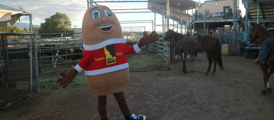 Spuddy Buddy enjoying the rodeo!